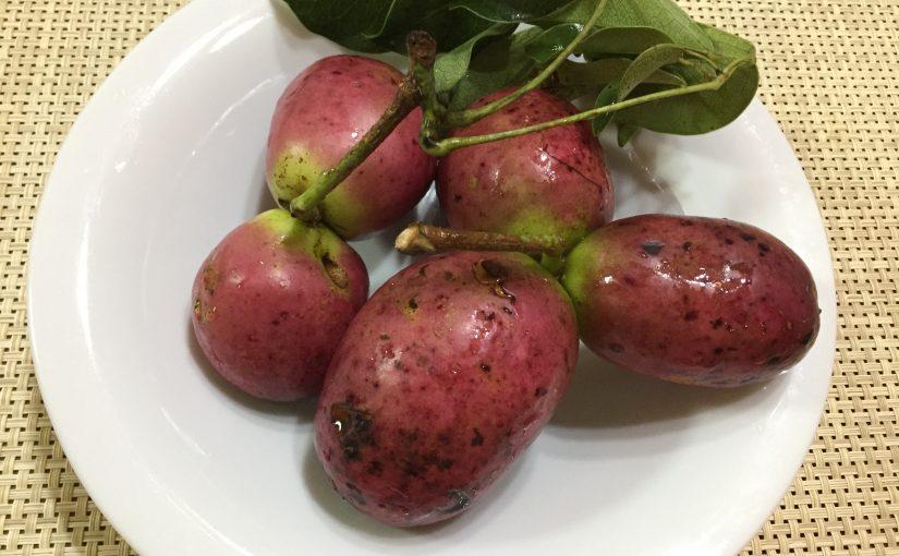 ムベという果物